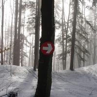 Egy nap Donovalyban – ha nem tudunk síelni