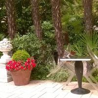 Vízszintes kertek, függőleges erdők - a