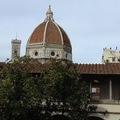 Firenzei gyorstalpaló