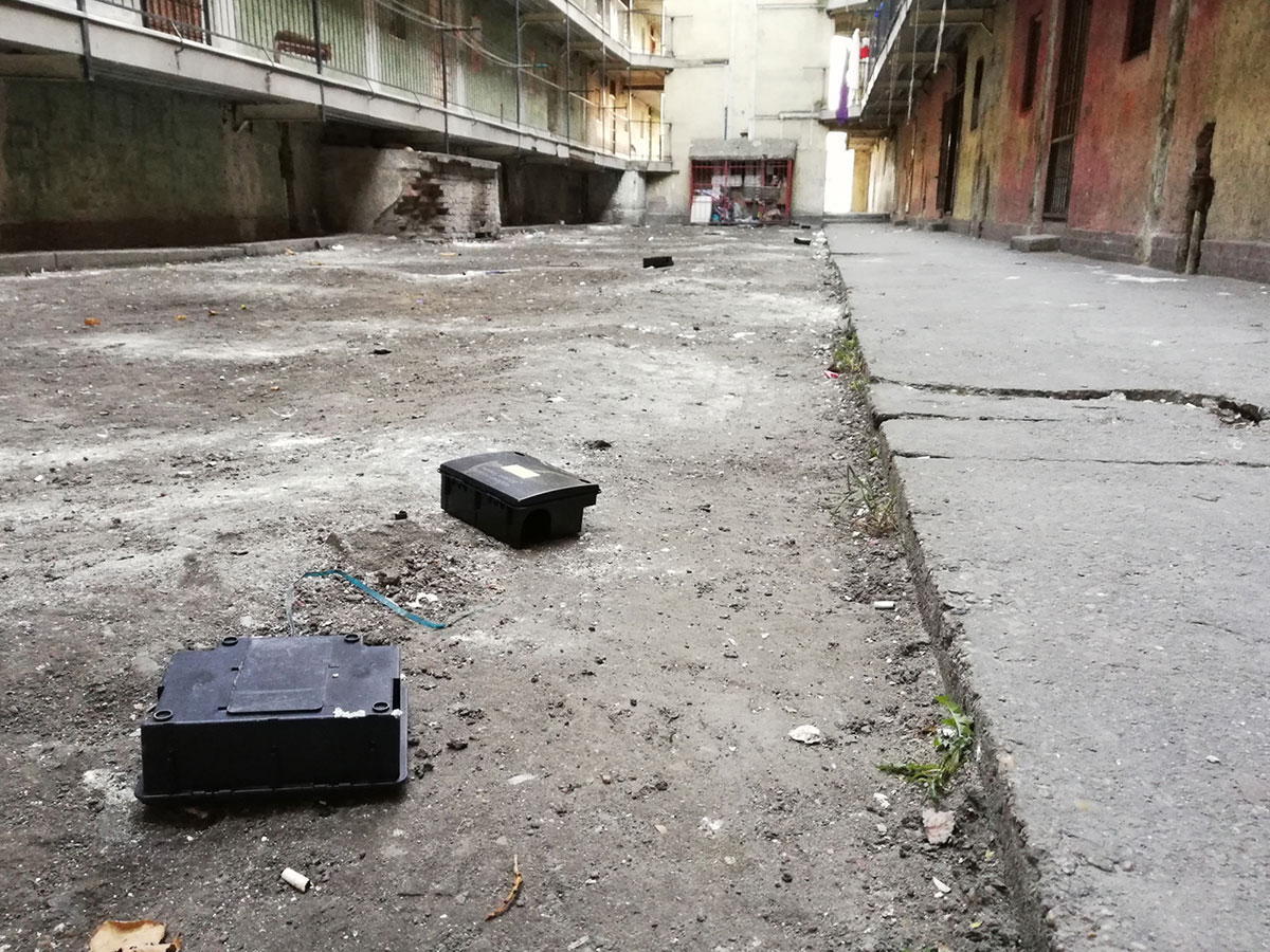 Hős utca 15/a, 2019.02.26.