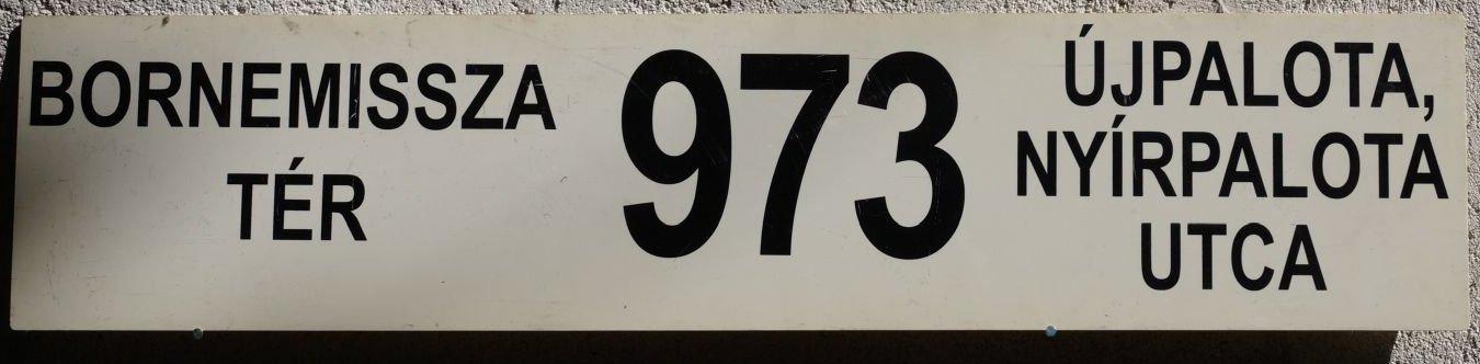 973e.jpg