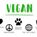 A vegán felfogás alapelméleteiről - Miért lettem vegán?