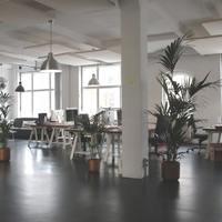 Mitől lesz zöld egy iroda?