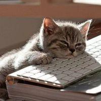 Utálja a hétfőt? 6 tipp, hogy túlélje a munkakezdést
