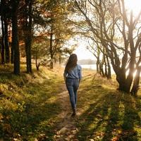 Már 20 perc a természetben is csökkenti a stresszt
