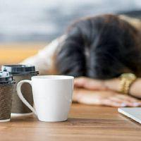 Bagoly vagy pacsirta? A későn vagy a korán kelők a hatékonyabbak?