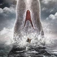 Egynémely nevezetes bálnák