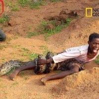 Óriás kígyó támadta meg a kisfiút, és az operatőr nem segített?