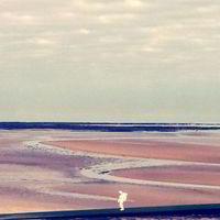 Ki sétálgatott űrruhában a strandon?