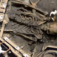 Óriás csontváz hoax