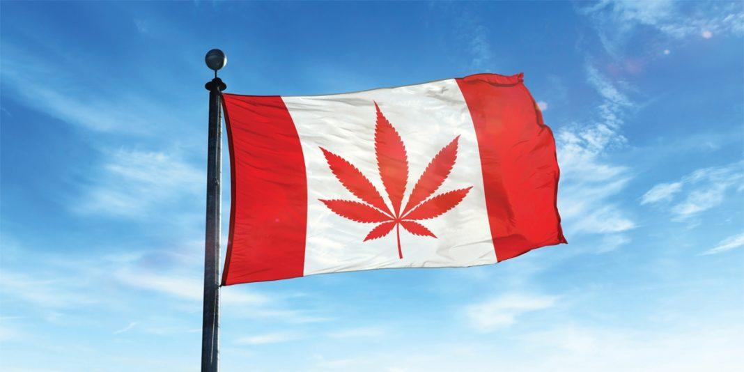 canada-cannabis.jpg