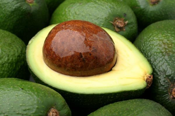 kk_avocados.jpg