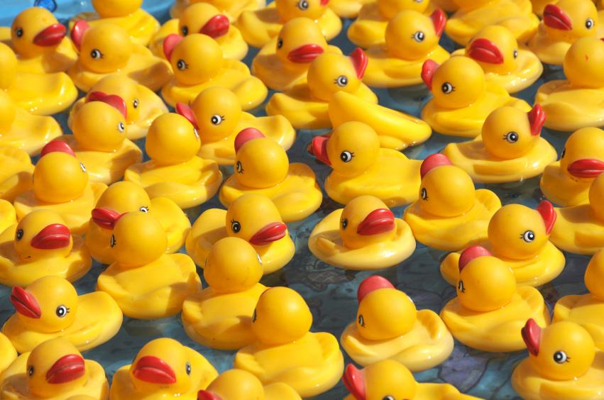 rubber-ducks.jpg
