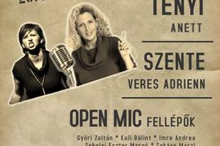 Open mic Budapesten, a Cafe Rock Cinema-ban