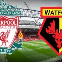 Liverpool - Watford - Darázsírtás