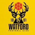 Top 10 vagy kiesés, azaz a Watford