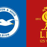 Brighton and Hove Albion – Liverpool – Sirály vs Kormorán