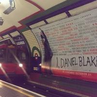 Arany Pálma, és a londoni filmmaraton