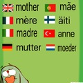 Anya - Mother
