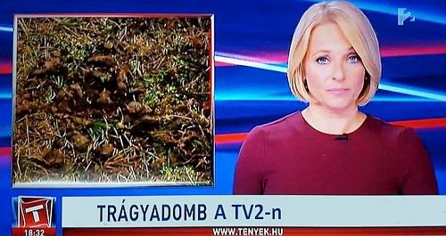 tv2_tenyek.jpg