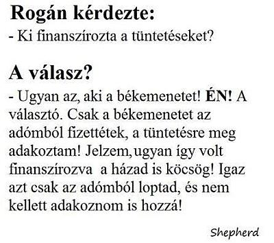rogan1.jpg
