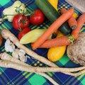 Mediterrán, zöldséges csirkés bableves - HEOL