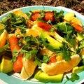 Narancsos, avokádós, répás saláta