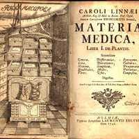 A homeopátiás gyógyszerekről