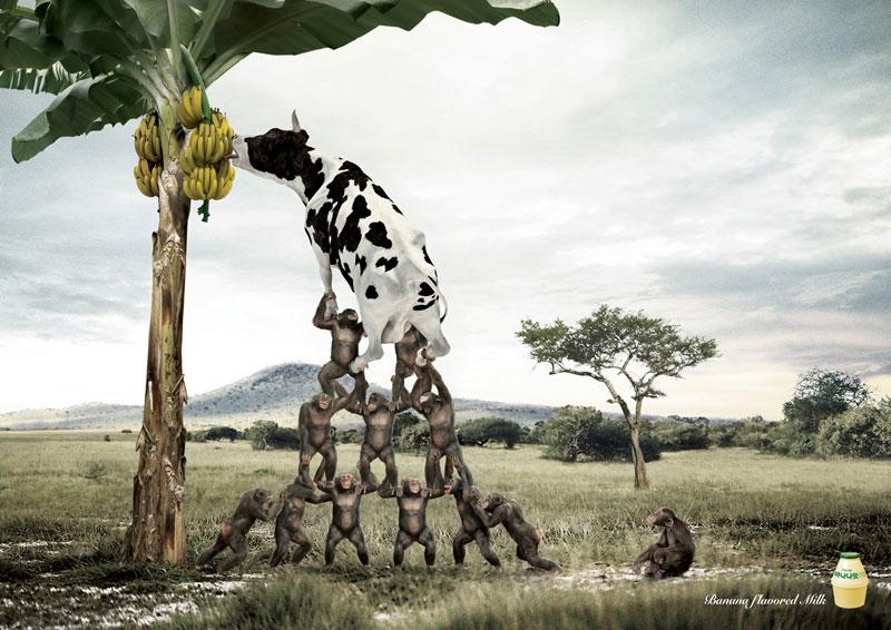 Banana-flavored-milk.jpg
