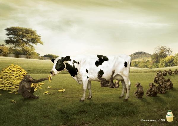 binggrae-banana-flavored-milk-farm-600-97405.jpg