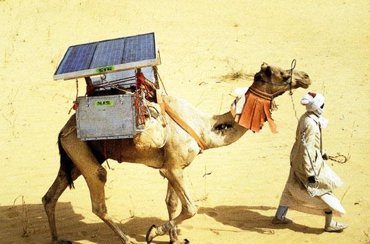 solarcamel-lead01.jpg