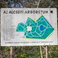 Alcsúti Arborétum - még építési terület