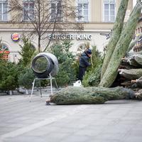 Karácsonyi vásár - Budapest