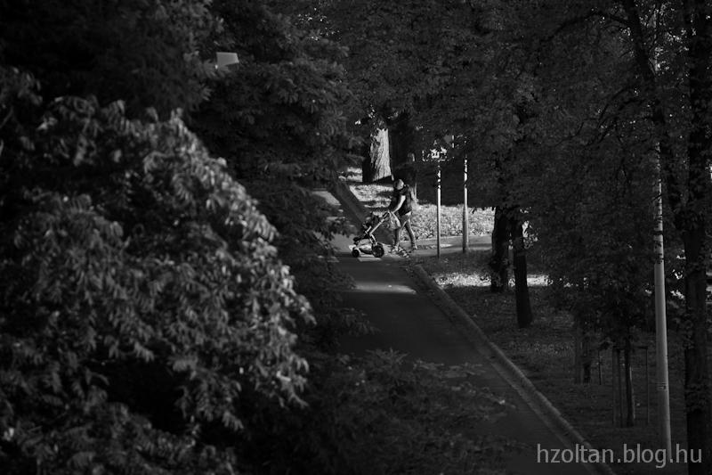 2013_09_22_Szfvar_terasz-1122_1.jpg