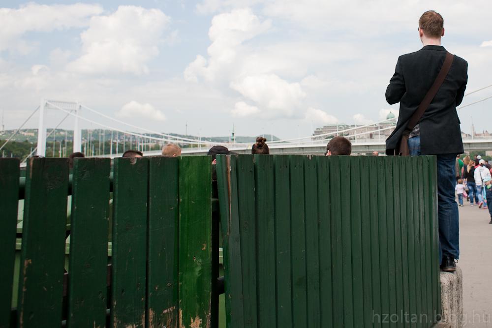 Besenyei Péter Erzsébet hídról való felszállására várók