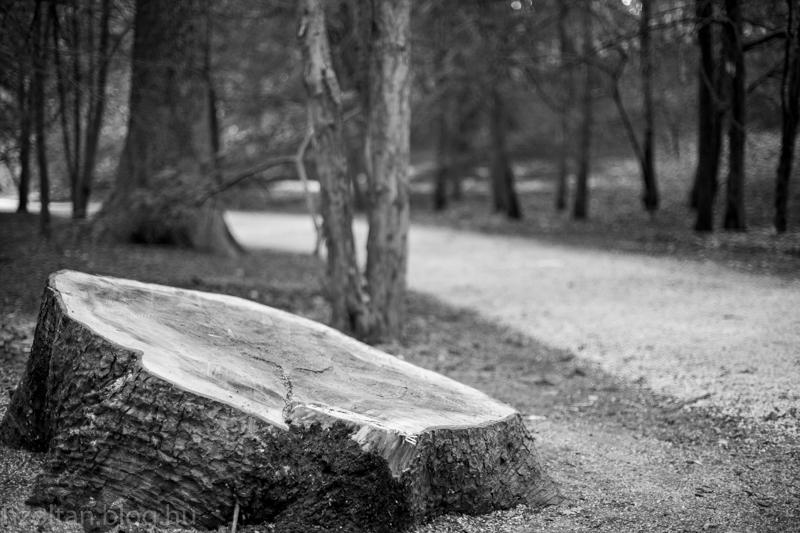 2015_04_04_alcsut_arboretum_felig_felujitva_blog-3678.jpg