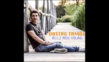 Vastag Tamás - Miss One Smile (Official Audio)