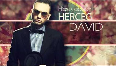 Herceg Dávid - Hiszek abban (Audio)