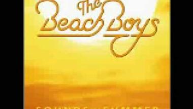 The Beach Boys - Lady Linda