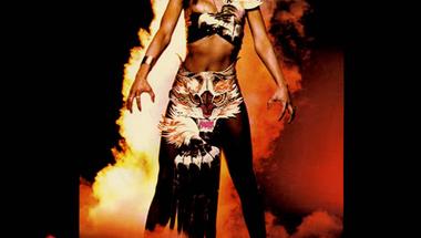 Amii Stewart - Light My Fire (single)