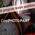 Corel PHOTO-PAINT 2017 - Testre szabás, e-book