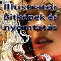 Illustrator CS6 - Bitképek és nyomtatás (magyar változat) e-book