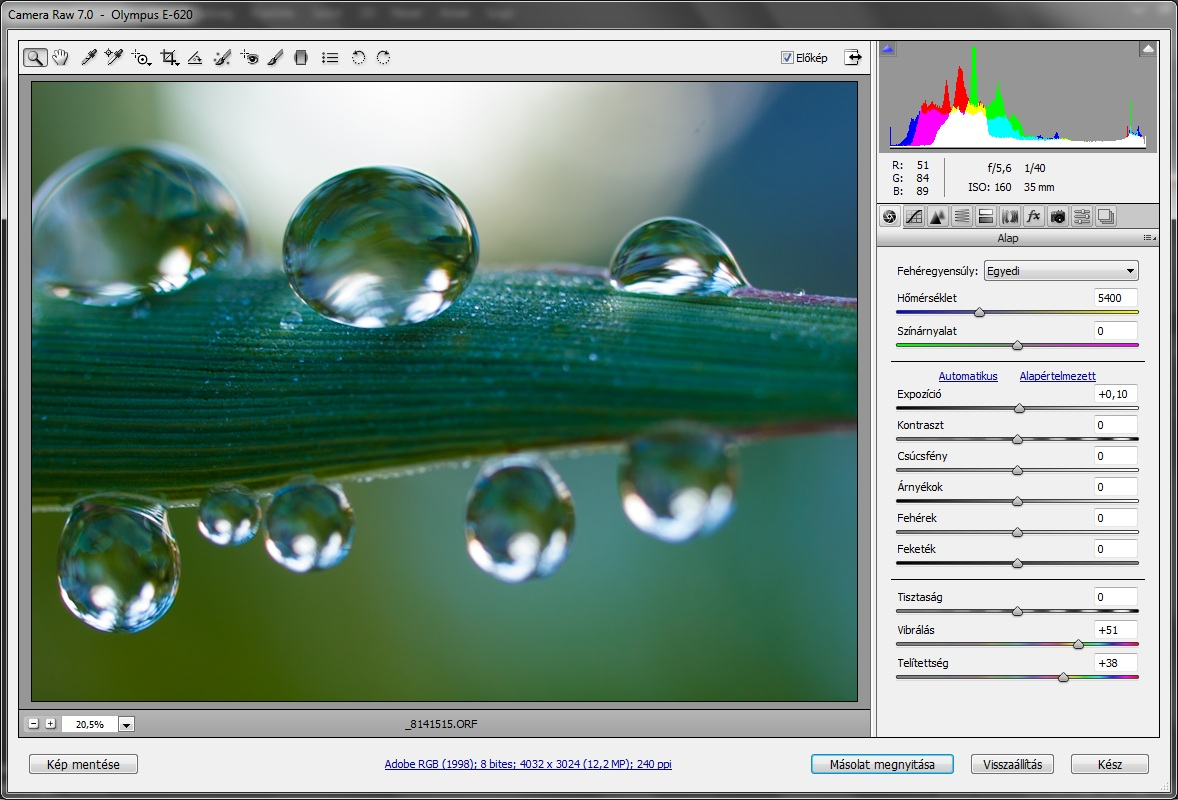 photoshop_cs_6_camera_raw.jpg