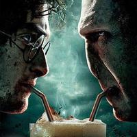 Harry Potter VS. Voldemort