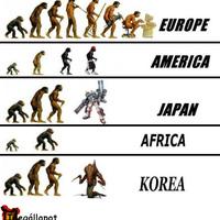 Evolúciós lépcsők