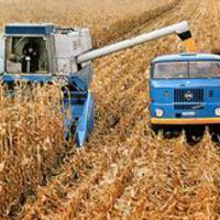 A világhírű magyar mezőgazdaság mítosza - és a valóság