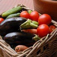 Megbízható zöldségek és gyümölcsök lelőhelye