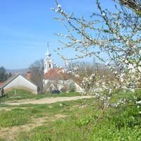 Borkóstolót tart a Linbrunn – és borkorcsolyás mártogatósokat készítek