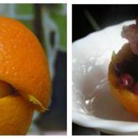 Ida narancskelyhe