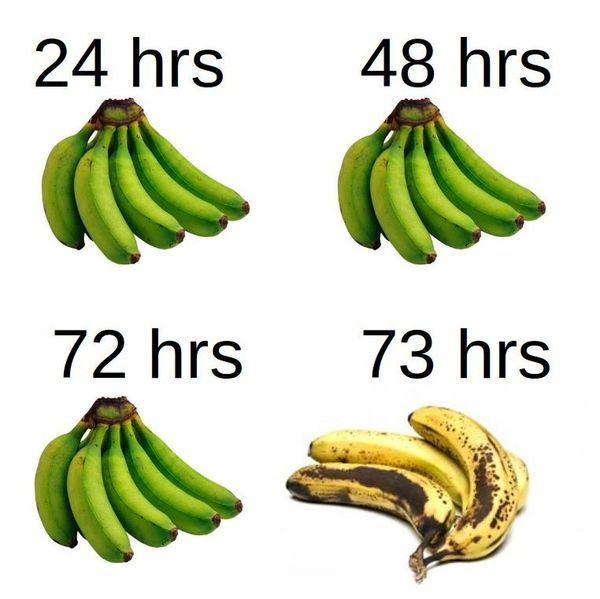 bananas-after-73-hours[1].jpg
